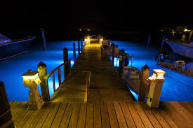 Dock Lights Marine Imagine Turning Your Dock Lights On From Your Mobile Device