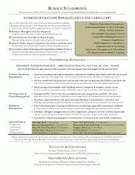Resume Writing Services Chicago Resume Template