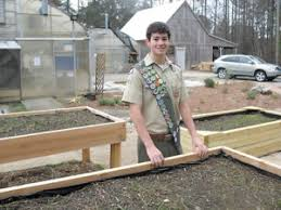 Small Picture Gardening for disabled