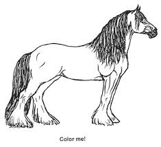 Clydesdale Coloring Page Kids Printables And Activities Horse