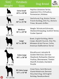 Dog Breed Size Chart Chic Dog Bed Size Dog Bed Size Chart By Breed Bed Size Xx