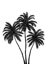 palm trees tumblr vertical. Palm Trees Silhouette By DisasterDamsel On DeviantArt Tumblr Vertical