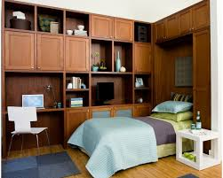 dual furniture. fold up wallbed and cupboard for dual purpose transitional room furniture