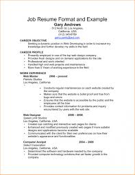 Professional Resume Format Examples Professional Resume Format Examples Free Resume Examples By 10