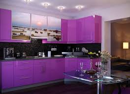 Stylish fashionable Purple Kitchen nice design purple kitchen