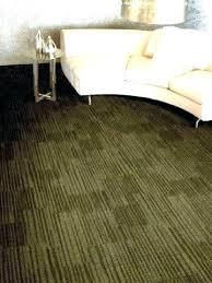 indoor outdoor carpet for basement image of damp