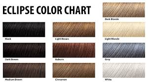 Hair Color Filler Chart Details About Eclipse Hair Filler Hair Fibers For Women Men 30g 10 Colors Free Shipping