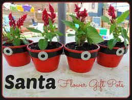 Wiresockmossshellchristmasflowersplantsdiyfestivegift Christmas Gift Plants