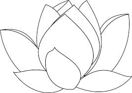 Tranh tô màu hoa sen