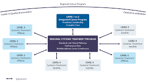 Systemic Treatment Plan 2019 2023 Cancer Care Ontario