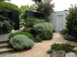 australian garden front yard landscaping