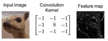 convolution 이미지에 대한 이미지 검색결과