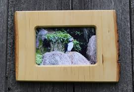 rustic picture frame 4 x 6 photo frame wildlife photo live edge atlantic puffin country home handmade frame log cabin decor from