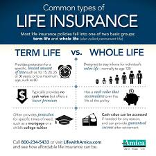 here s the gist of term vs whole life insurance