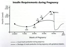 Blood Glucose Levels Pregnancy Chart Foy Update Gestational Diabetes My Story And Recipes