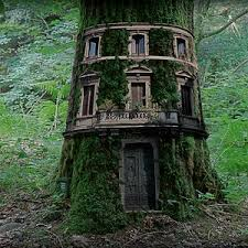 10 Epic Treehouses Cooler Than Your ApartmentCoolest Tree Houses