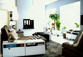 full size of living room pull out sofa bed ikea bedroom ideas for small rooms delhi