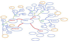 essay about networks nature and environment