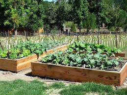 garden box design garden box ideas images about raised gardens on planter box garden designs