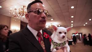 Dog <b>Fashion</b>: <b>2017 New</b> York Pet <b>Fashion</b> Show - YouTube