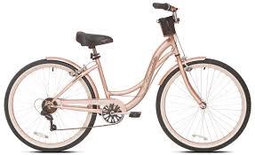 Womans adult bike wood finish