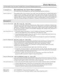 Accounting Executive Sample Resume 19 Sales