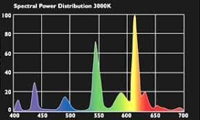 T5 Light Spectrum