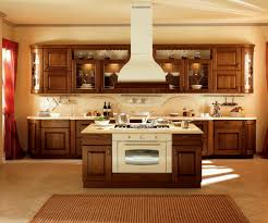 best kitchen cabinets ideas in warm themed kitchen made of oak and glass with face