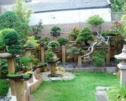 bonsai gardens. streamlinkcom bonsai garden gardens o