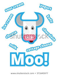 Words With Moo Cow Sign Poster Different Words Crazy Stock Vector Royalty Free
