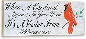 Amazon.com: When a Cardinal Appears in Your Yard It is a Visitor from Heaven  Wall Plaque: Home & Kitchen