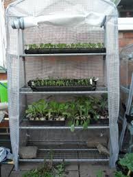 Kitchen Garden Plants What To Do In The Kitchen Garden In May Not Just Greenfingers