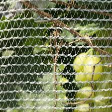 bird netting for garden. Delighful Garden Bird Netting For Garden With