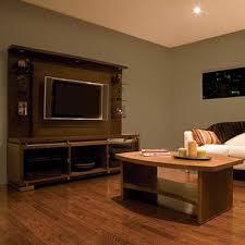 Hardwood Floors Living Room Model Best Inspiration Design