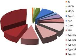 Diabetes Pie Chart Heterogeneity Of Diabetes The Pie Chart Represents The