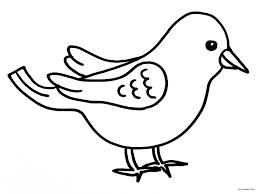 Vogel Malen Perfect Te Maken Met Een Knallende Lucht Door Net Wat