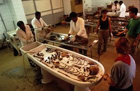 Forensic Anthropology Anthropology Archeology Career Education