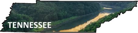 South Holston River Hatch Chart