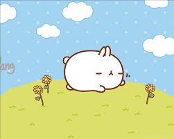 Download Gratis Kartun Lucu Kelinci ...