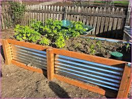 diy garden bed raised garden beds diy