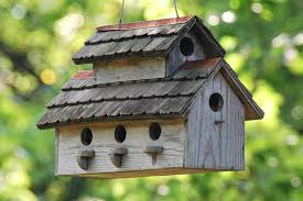 image of affordable unique bird houses for