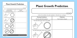 Plant Growth Observation Chart Plant Growth Prediction Worksheet Plants Living Things