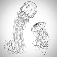 jellyfish drawing easy. Simple Drawing Jellyfish Drawing For Kids U201c With Easy N