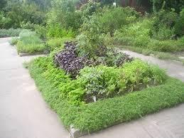 parterre vegetable garden design new garden design ve able patch