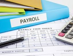 How Are Payroll Taxes Calculated What Are Payroll Taxes How To Pay Payroll Taxes Ignite Spot