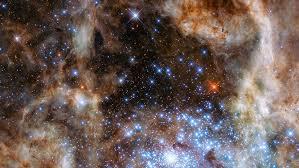 Revelan una condición fundamental para la creación de vida en el universo |  Canarias Noticias