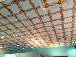 gallery drop ceiling decorating ideas. Wallpaper On Drop Ceiling Tiles Gallery Decorating Ideas I