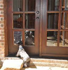 dog doors for french doors. Security Boss Dog Doors For French