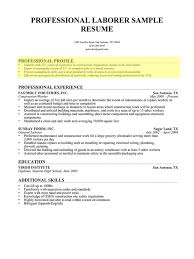 How To Write A Professional Profile Resume Genius Intended For