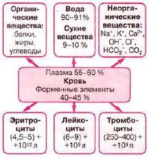 Состав крови плазма и форменные элементы крови Биология  Рис 47 Состав и основные показатели крови человека